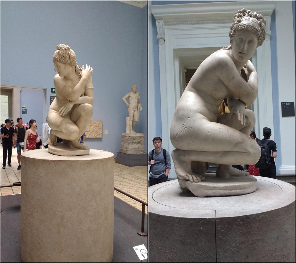 Lelys Venus